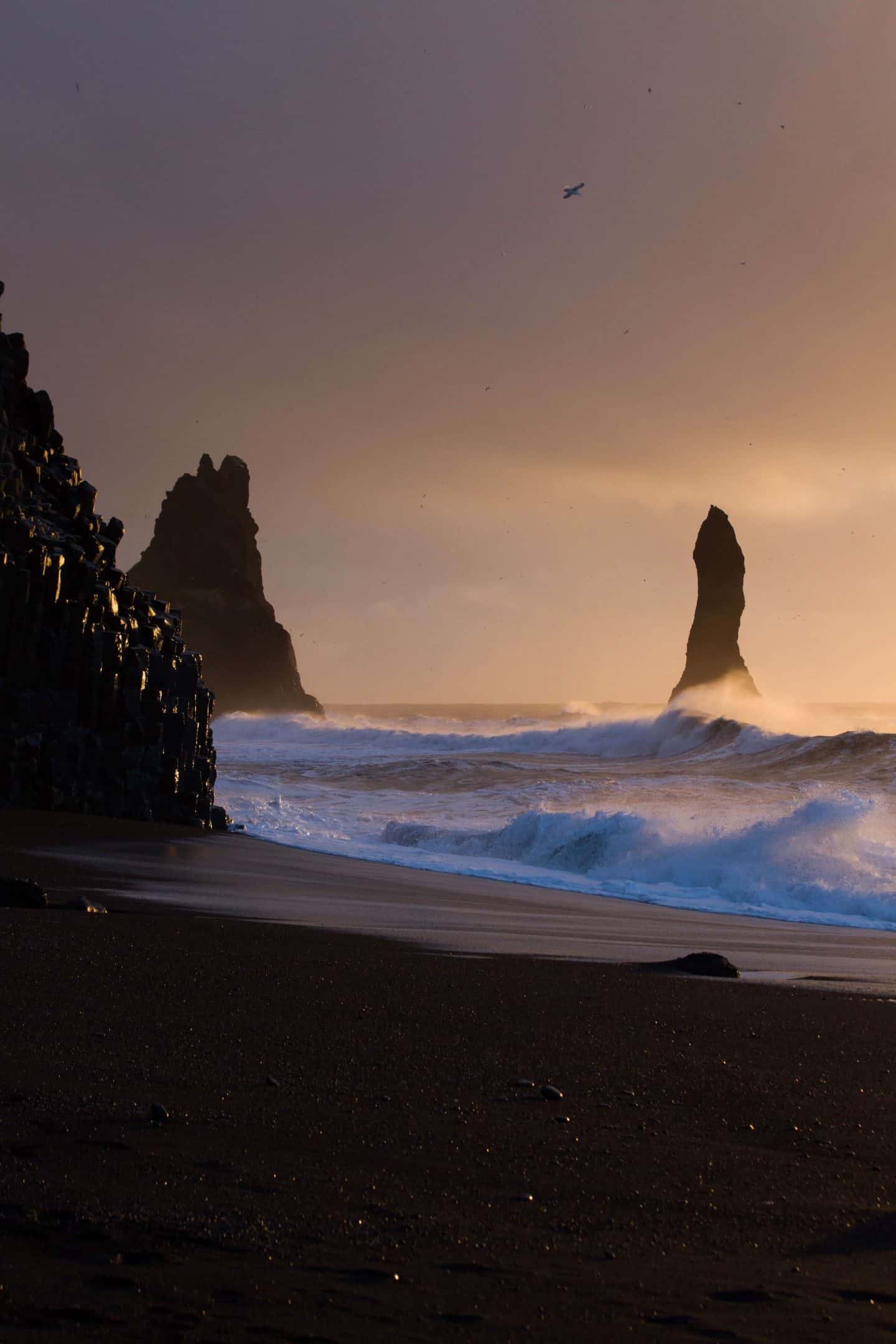 rock formations on the black sand beach at sunset in Iceland