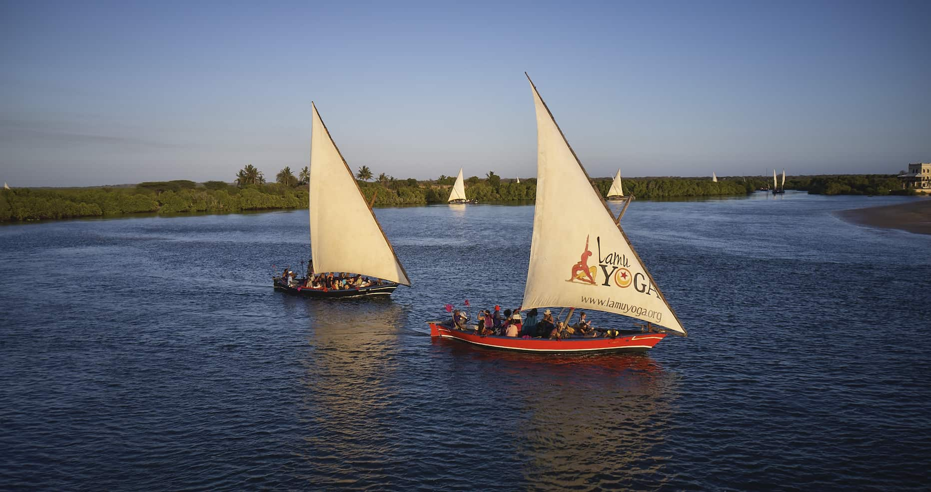 Dhows sailing during the LamuYoga Festival