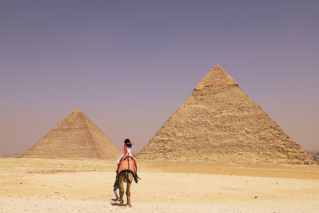 Camel ride in the pyramids of Giza